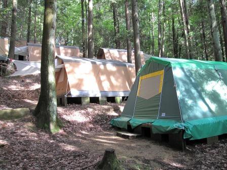 大阪府 島本町立キャンプ場 の写真g67516